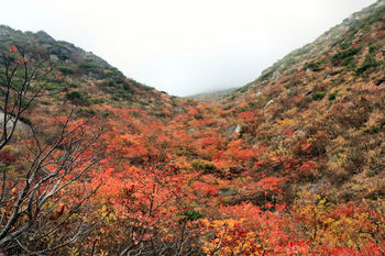 安達太良山 101-2.jpg